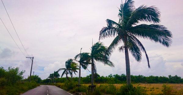 沖縄で建てる木造住宅☆台風に強い家を造る3つのポイント