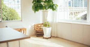 沖縄の注文住宅☆通風や採光を工夫して快適に暮らす